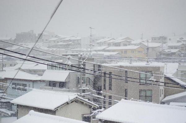 DSC01996 雪.jpg