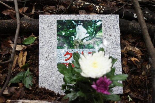 DSC06654 クリス墓碑.jpg