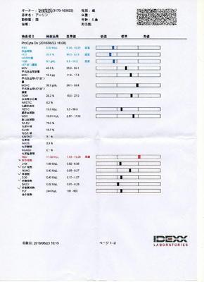 あーりん血液検査 P1.jpg